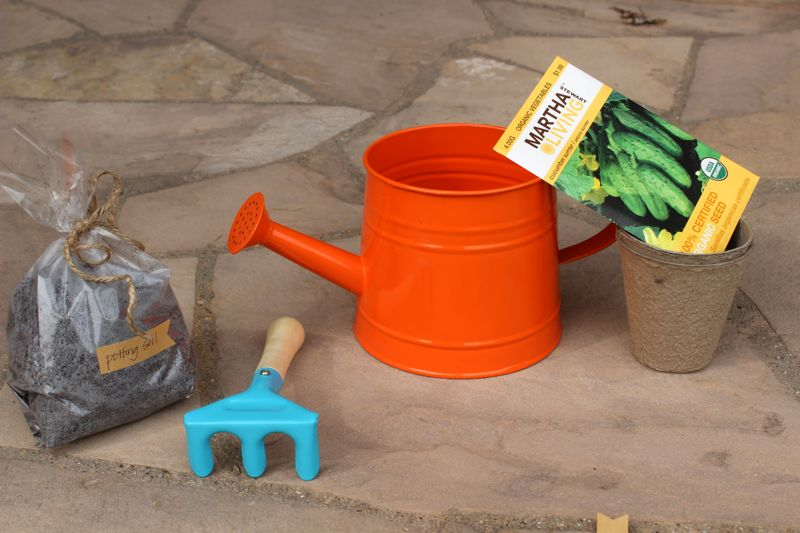 DIY gardening kits for kids_jsorelle