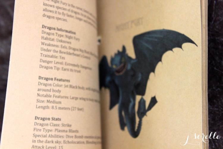 how to train your dragon party_book of dragons