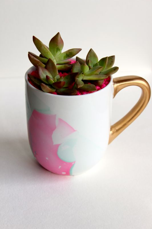 pink-aqua-white-mug-rocks-succulent-planter-gold-water color