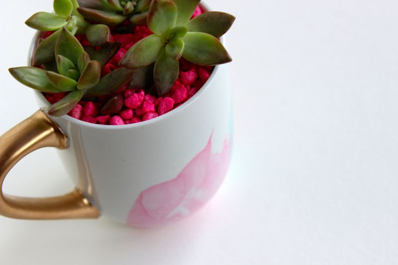 succulent-pink-aqua-planter-mug-water color-nail polish