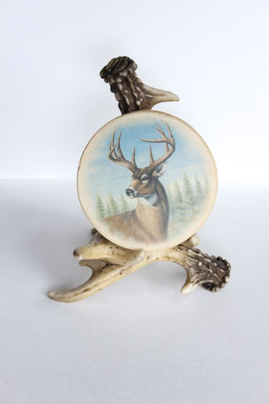antler-coaster-set-deer-diy-thrift-store-project-idea-swap