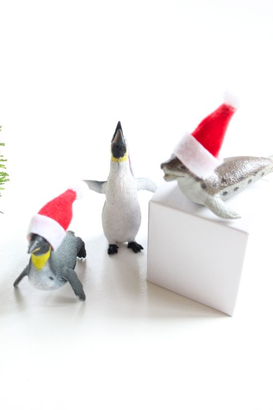 penguins-white-boxes-with-mini-santa-hats