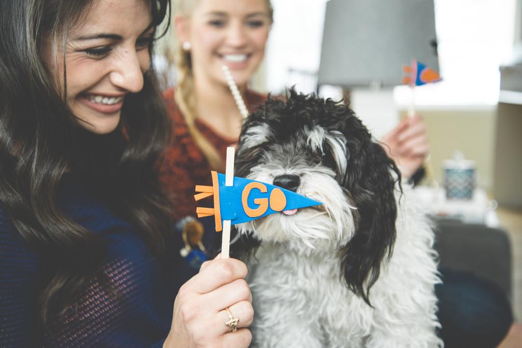 diy-go-orange-and-blue-pennant-dog-bronco-fan
