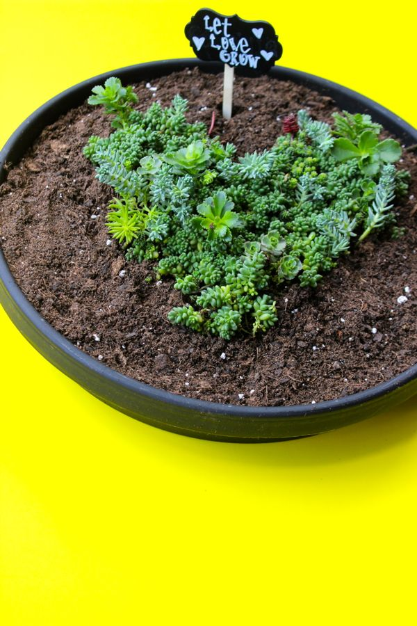 let-love-grow-planter-yellow