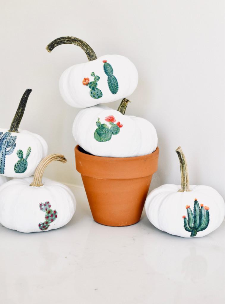 Mini Cactus Garden Pumpkins