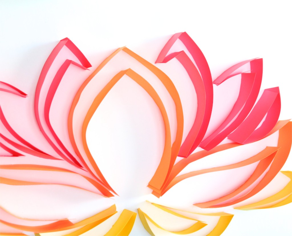 red-orange-yellow-lotus-flower