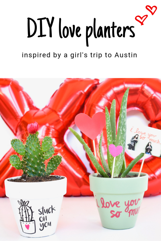 DIY valentines day planter-cactus-austin-love-wall-i-love-you-so-much