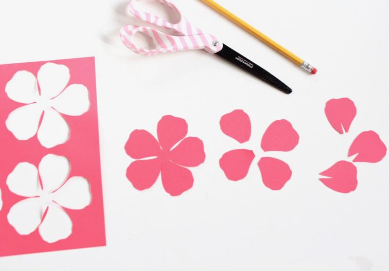 coral-paper-flower-petals